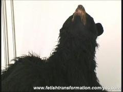 Picture Sandra transformed like a bear