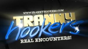 Horny Stud Picks Up Tranny Hooker