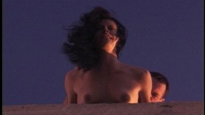 Liza Harper gets banged in the ass up on the roof(clip)