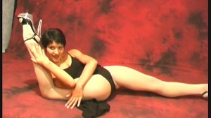 Flexible Aida in nylons (clip)
