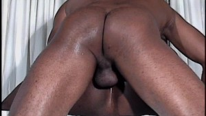 Chocolate Cum - Black Wolf