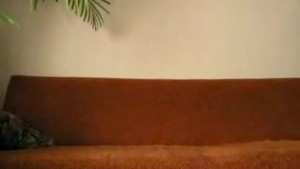 Horny amateurs missionary fucking on the sofa
