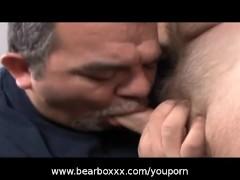 Horny Hairy Bears