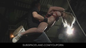 Candy Lover spanked and fucked in submission