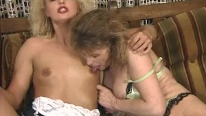 Milf and Cougar - Telsev
