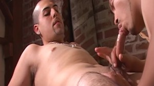 Latino homos barebacking - Factory Video