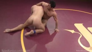 Brand New Muscled Studs Fight