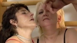 crazy horny moms
