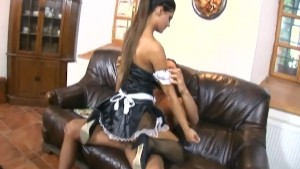 Maid fucking in her uniform and fishnet stockings