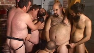 Bear Orgy Party