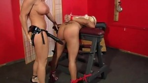 Blonde Babe Bound And Banged - Maxine X