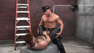 Leather Muscular Bears House