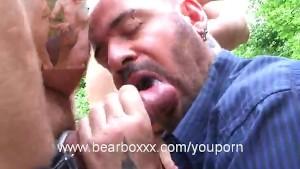 Bears of Paris