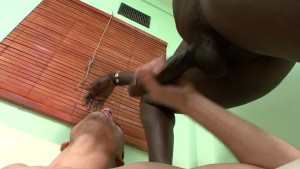 big black gay cock - Media Superb