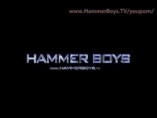Haury anus from hammerboys